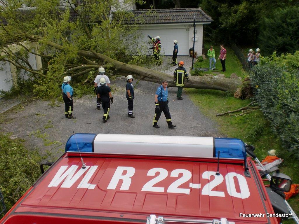 2012-08-09 Baum auf Garage